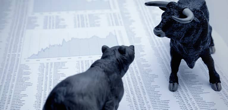 bear and bull market